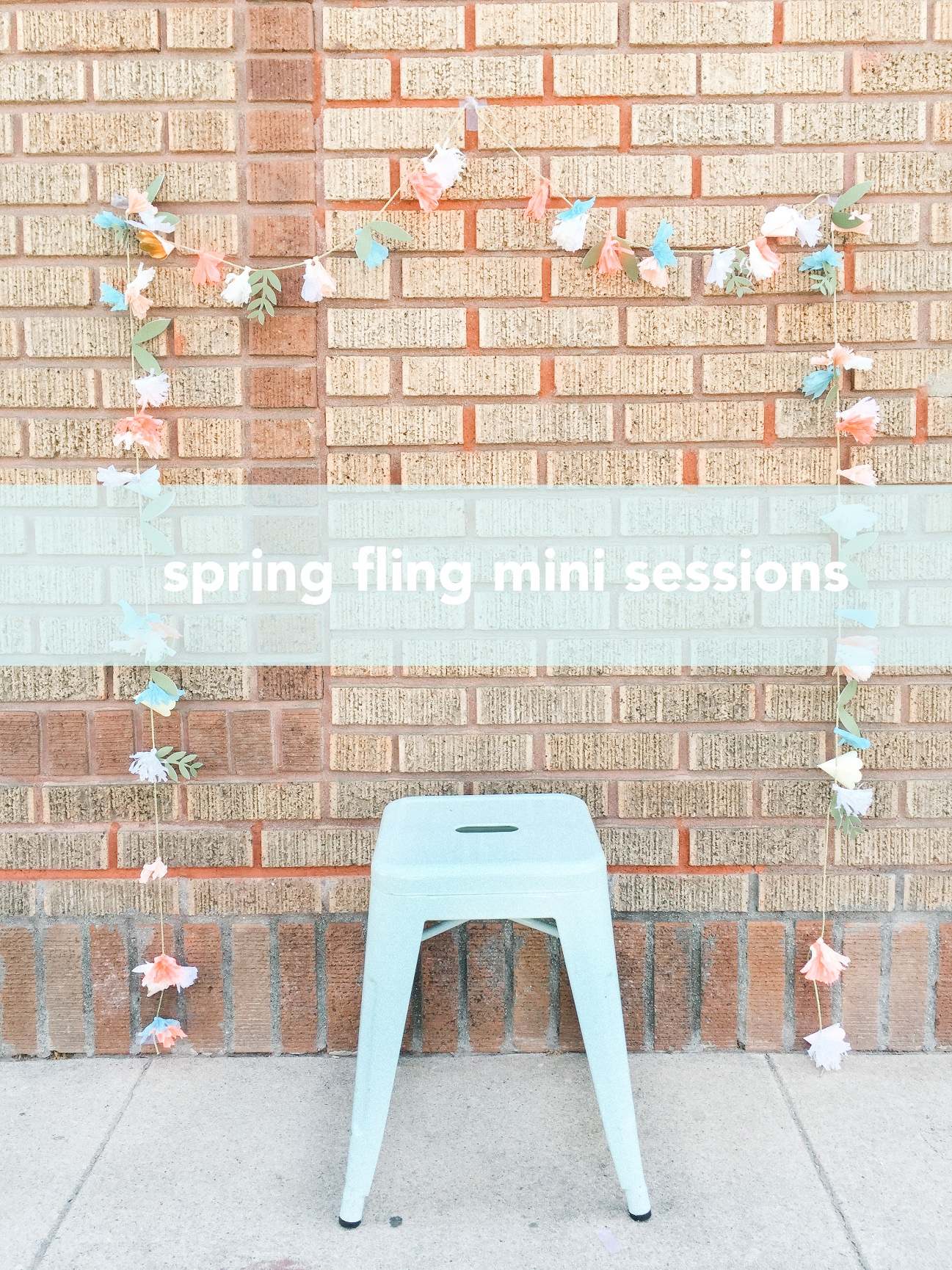 spring-mini-sessions-los-angeles-orange-county