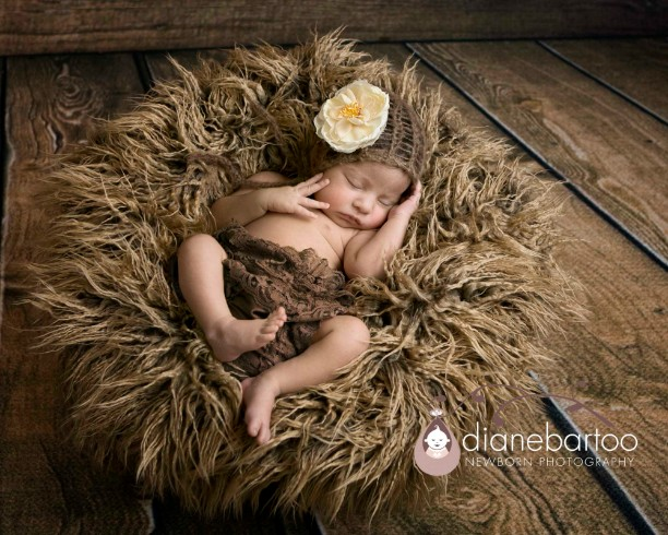 California newborn photographer