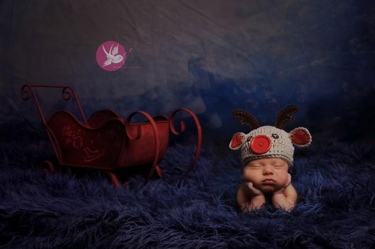 Little buddy, big dreams   I   Bloomington, IN newborn photographer