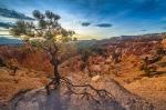 Bryce Canyon -- an amazing place